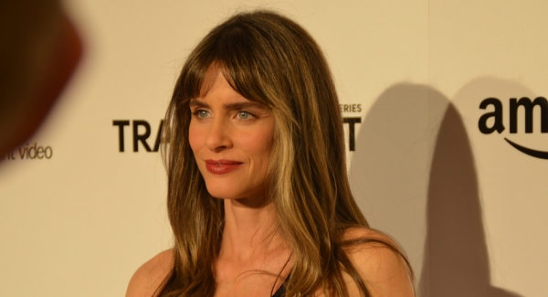 How well you know of Amanda Peet?