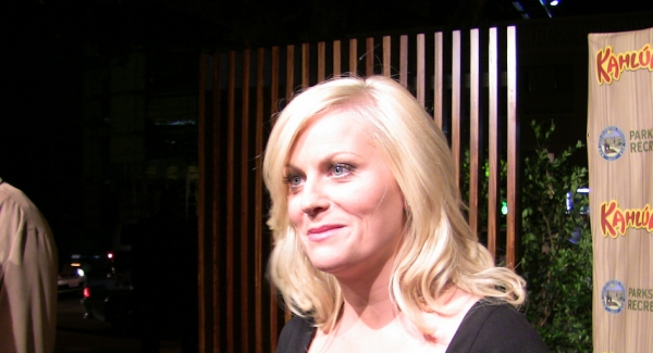 Test your knowledge about Amy Poehler
