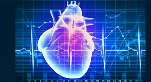 electrophysiology Quiz