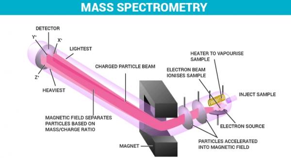 Mass Spectrometry Quiz