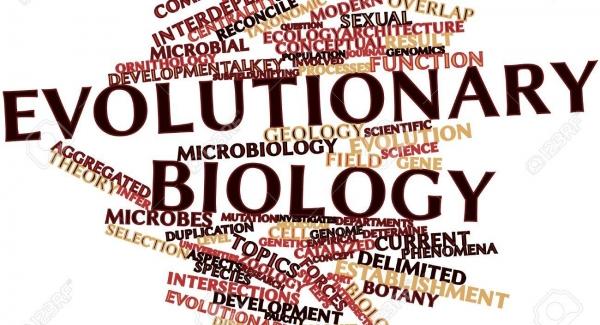 Evolutionary biology – the study of the origin quiz