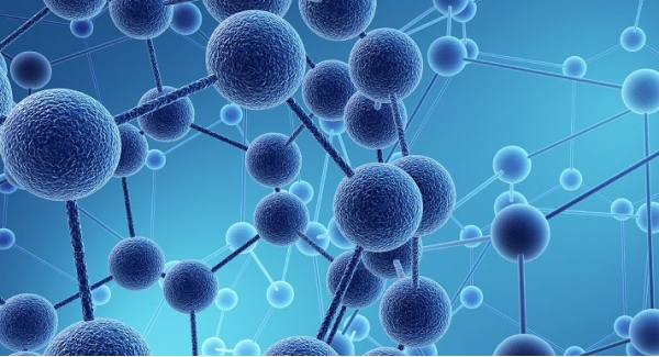 Molecular biology – the study of biology and biological functions Quiz