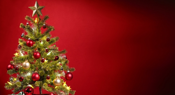 Do you have a real Christmas tree or a fake one?