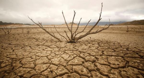 Drought Quiz