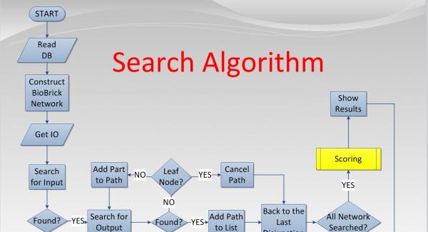 Quiz: Algorithms Mock tests on Searching.