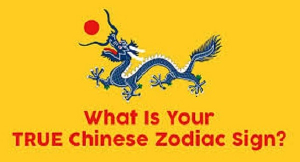 Which sign of the Chinese zodiac are you?