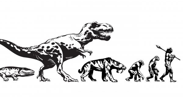 Evolutionary biology - The study of the origin | Quiz test